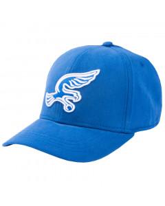 Silverhawks kapa