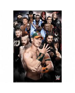 WWE Superstars 234 poster