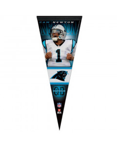 Carolina Panthers Premium kleine Fahne Cam Newton