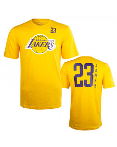LeBron James 23 Los Angeles Lakers Standing Tall T-Shirt