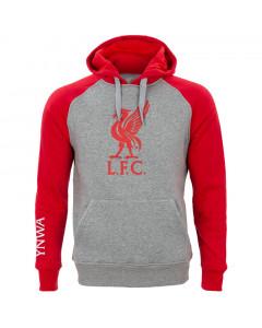 Liverpool Grey Kapuzenpullover Hoody N°4