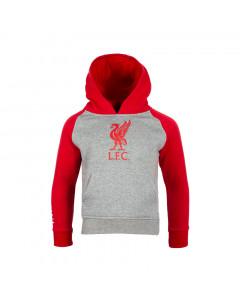 Liverpool Grey Kinder Kapuzenpullover Hoody N°4