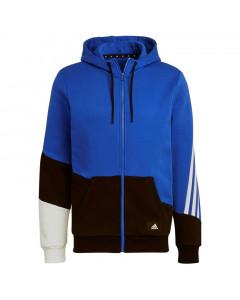 Dinamo Adidas Colorblock jopica s kapuco