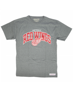 Detroit Red Wings Mitchell & Ness Team Arch T-Shirt