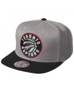 Toronto Raptors Mitchell & Ness XL Logo 2 Tone Mütze