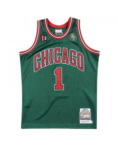Derrick Rose 1 Chicago Bulls 2008-09 Mitchell & Ness Authentic Alternate dres