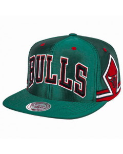 Chicago Bulls Mitchell & Ness Green Jersey kapa