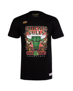 Chicago Bulls Mitchell & Ness Green Champions T-Shirt