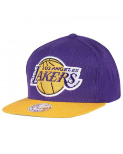 Los Angeles Lakers Mitchell & Ness Team Logo 2 Tone Mütze