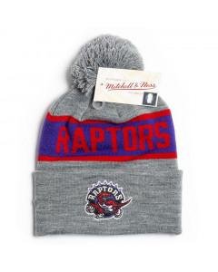 Toronto Raptors Mitchell & Ness Team Tone Wintermütze