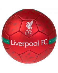 Liverpool Liverbird  lopta