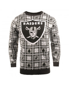 Las Vegas Raiders Big Logo Pullover