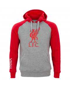 Liverpool Grey pulover s kapuco N°4