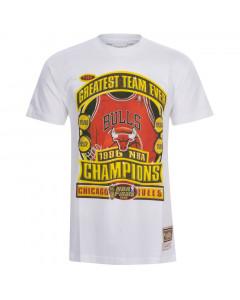 Chicago Bulls Mitchell & Ness Champions Print HWC T-Shirt