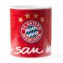 FC Bayern München šolja