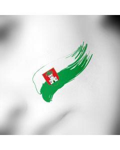 Ljubljana tattoo zastava