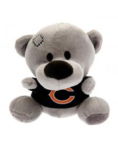 Chicago Bears Timmy Teddy