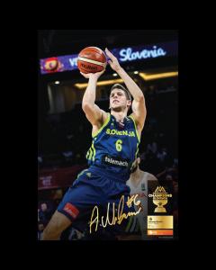 Poster Aleksej Nikolić Eurobasket 2017