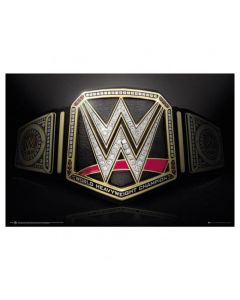 WWE Title Belt 215 poster