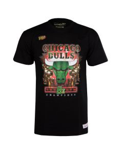 Chicago Bulls Mitchell & Ness Green Champions majica