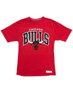 Chicago Bulls Mitchell & Ness Team Arch majica