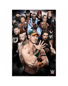 WWE Superstars 234 Poster